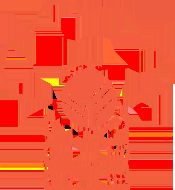 cloud backup for servers logo